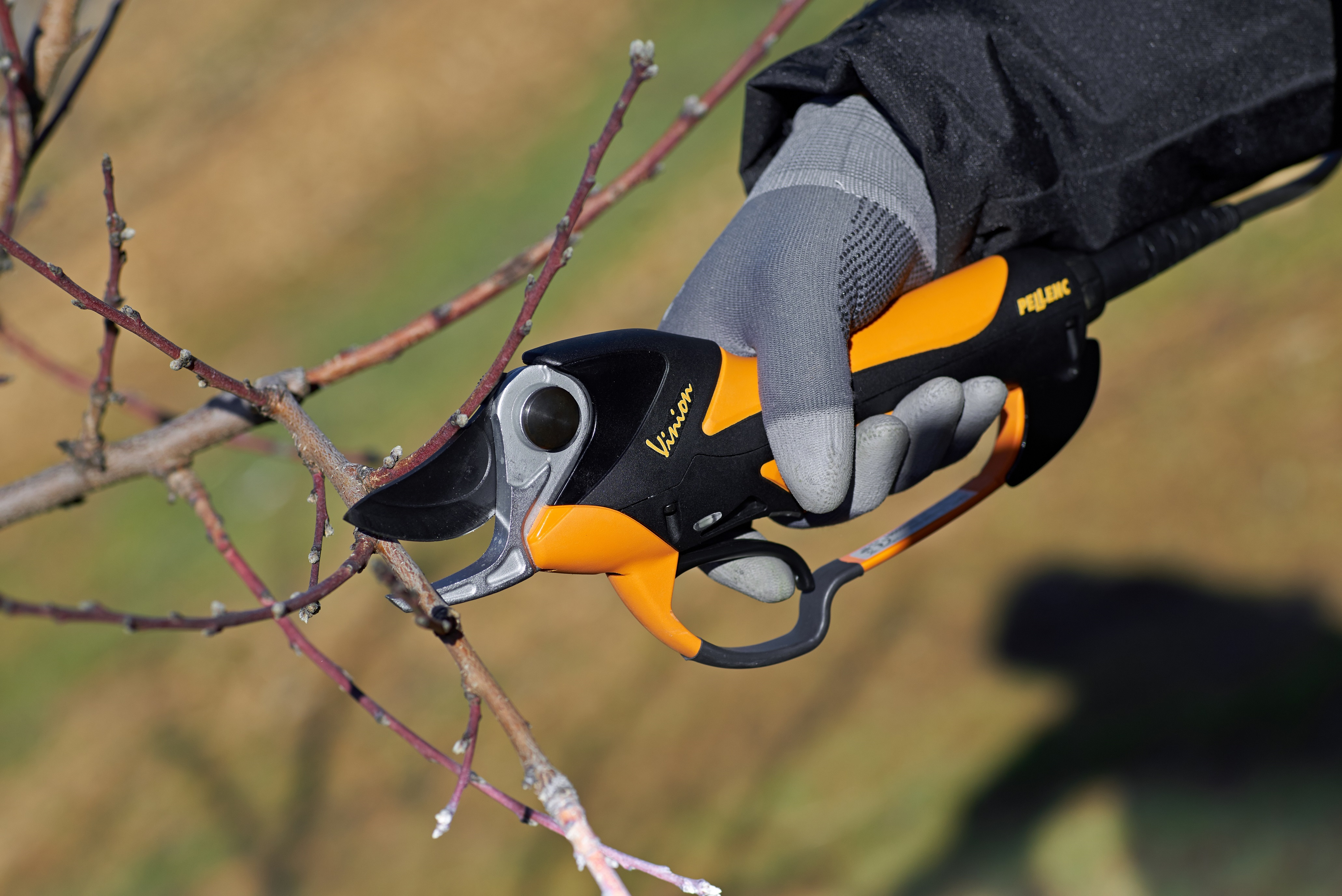 Pellenc Launches Two new Battery Powered Pruning Shears