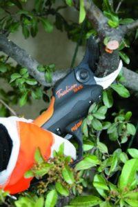 pellenc_pruning_shears_side