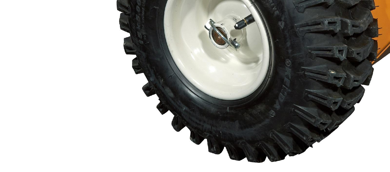 Cleanion-roues-motorisees